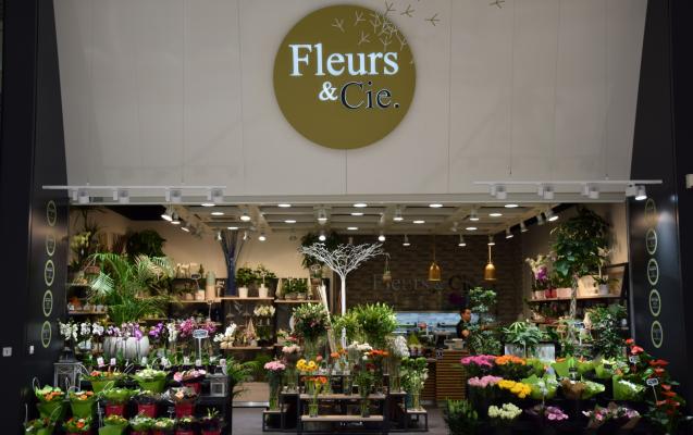 Fleurs cie - Leclerc saint gregoire horaires ...